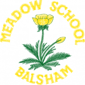 The Meadow Primary